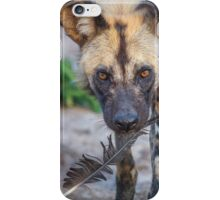 Wild Dog's Prized Feather iPhone Case/Skin