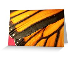 Wing of a Monarch Greeting Card