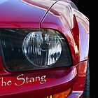 The Stang by MDossat