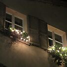 I DRESS THE WINDOWS FOR CRISTMAS........AUGURI ! by Guendalyn