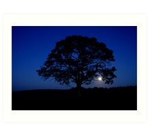 Moon rising over Lonely tree, Stewiacke Art Print