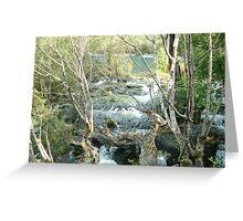 Stream at Jiuzhaigou Greeting Card