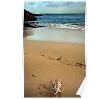 st ives beach scene Poster