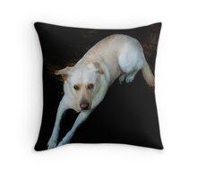 Happy Birthday, Dog lover Throw Pillow