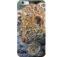 Leopard Cub Hideaway iPhone Case/Skin
