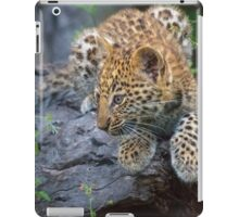 Leopard Cub Hideaway iPad Case/Skin