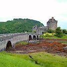Eilean Donan Castle VII by Tom Gomez