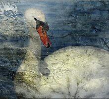 Winter Swan by Crista Peacey