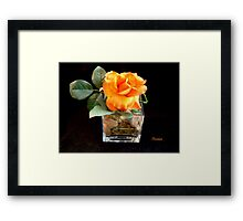 A Rose to Brighten Your Day Framed Print