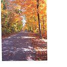 Autumn road 2 by gypsykatz