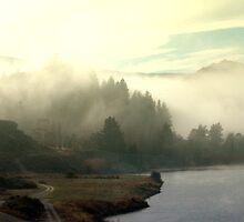 FOG NEW ZEALAND MORNING  by SofiaYoushi