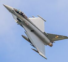 Royal Air Force Typhoon of N01 Squadron by Lee Wilson
