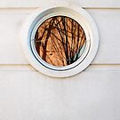 Abstract Window by H. Lee