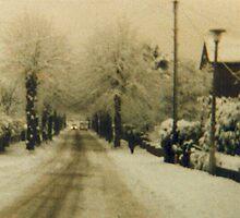 Somerleyton ave Kidderminster England by mscristal