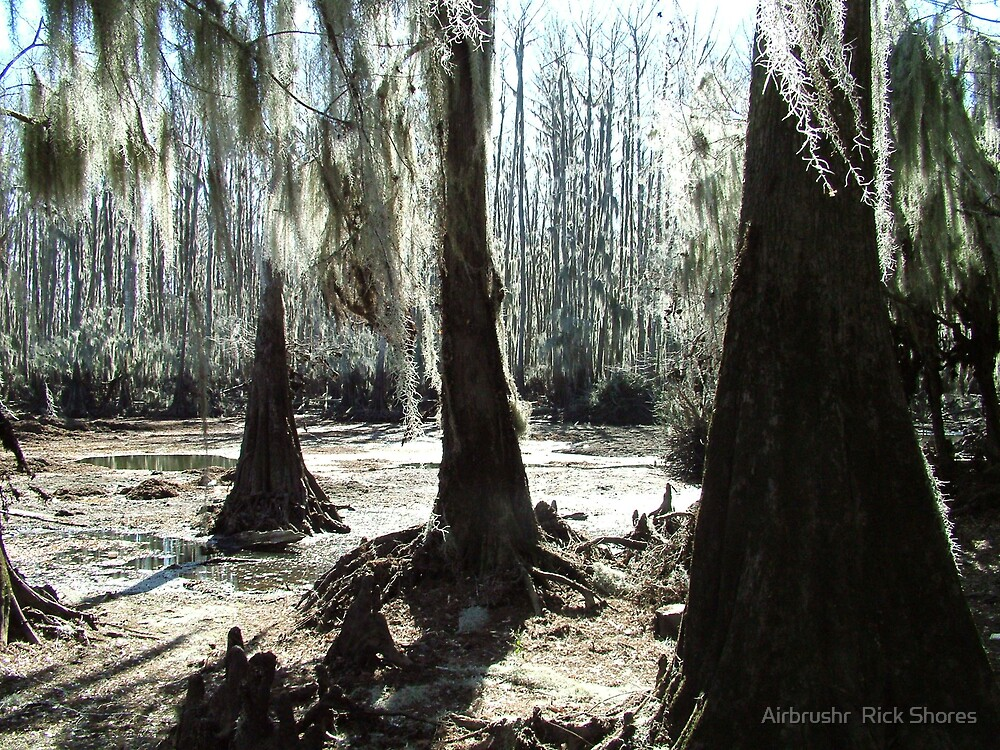 bayou by Airbrushr  Rick Shores
