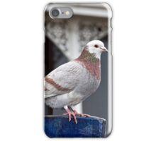 Museum Keeper iPhone Case/Skin