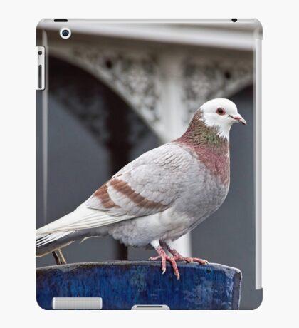 Museum Keeper iPad Case/Skin
