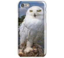 Owl with a view iPhone Case/Skin