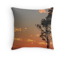 end of days Throw Pillow