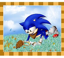 Sonic and the Hedgehog Photographic Print
