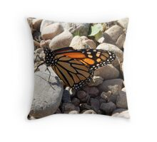Broken Butterfly Throw Pillow