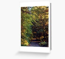 Clear Lake Morning Greeting Card
