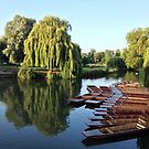 Punts in the Morning by babibell