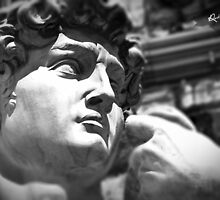 the David, Florence Tuscany by robozcapoz