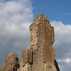 Sherborne Old Castle (8) by kalaryder