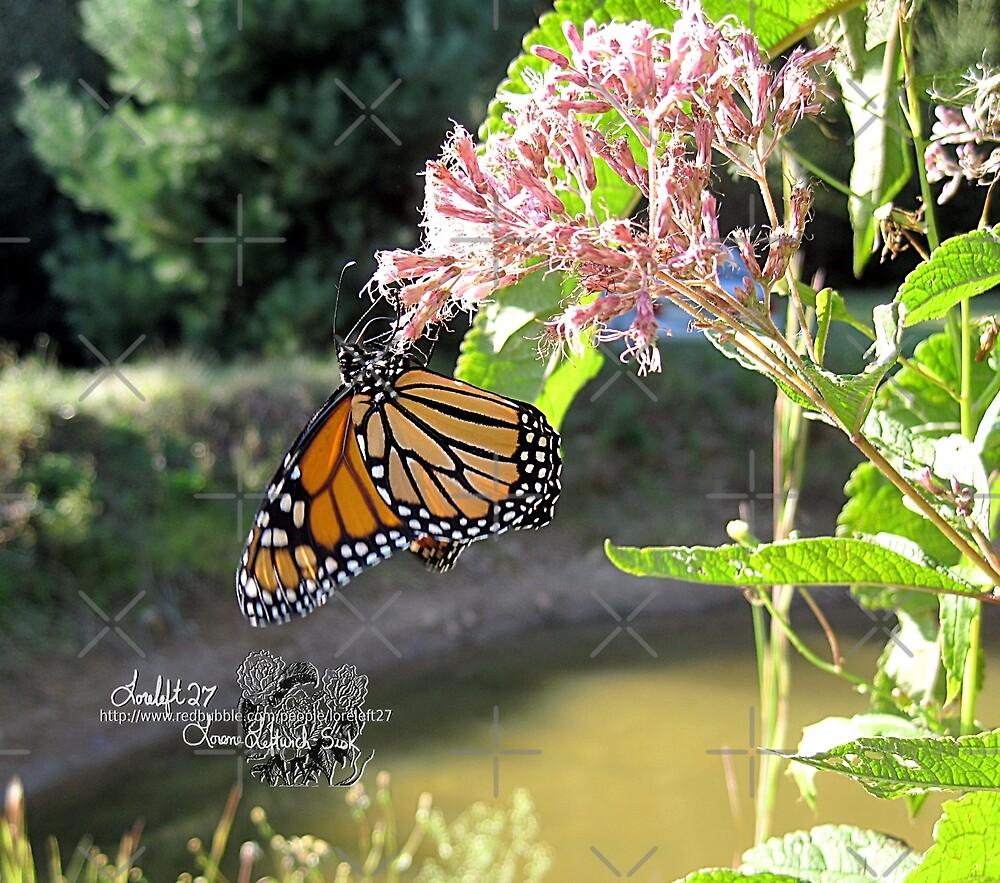 monarch season by LoreLeft27