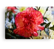 A flower in pastels Canvas Print