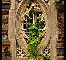 Ivy League by Bridges