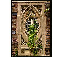 Ivy League Photographic Print