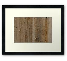 Paint Decay Texture 1 Framed Print