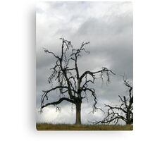 Desolation Canvas Print