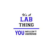 It's a LAB thing, you wouldn't understand !! by thenamer