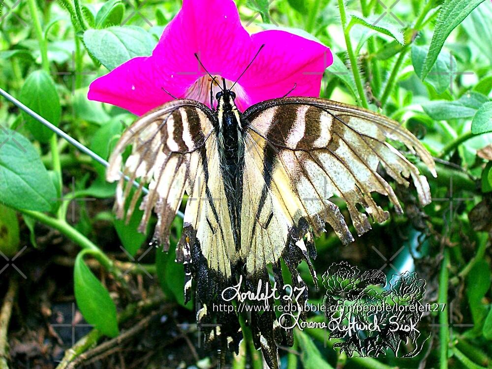 so take these broken wings by LoreLeft27