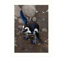 Penguin Flap Art Print