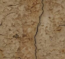 Paint Decay Texture 2 by wetdryvac