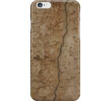 Paint Decay Texture 2 iPhone Case/Skin