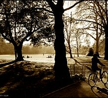 Winter sun in the Park. by SebastienGenet