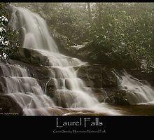 Laurel Falls Feb. 06 by ThomasRBiggs