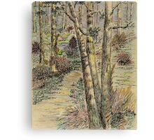 A Forest Path Canvas Print