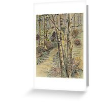 A Forest Path Greeting Card