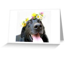 BLACK LABRADOR RETRIEVER HAPPY  Greeting Card