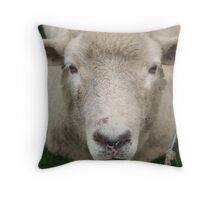 What ewe looking at? Throw Pillow