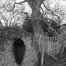 Secret Hiding Places by CinB
