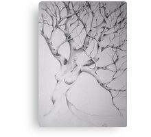 women tree Canvas Print