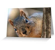 If I get any closer I'm gonna smudge your lens! Greeting Card