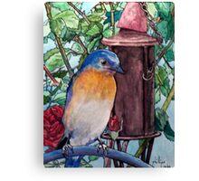 Mr. Blue On Watch Canvas Print